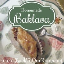 Homemade Greek Baklava