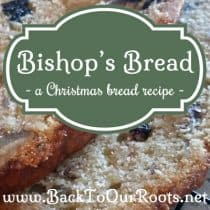 Bishop's Bread ~ A Christmas Bread Recipe