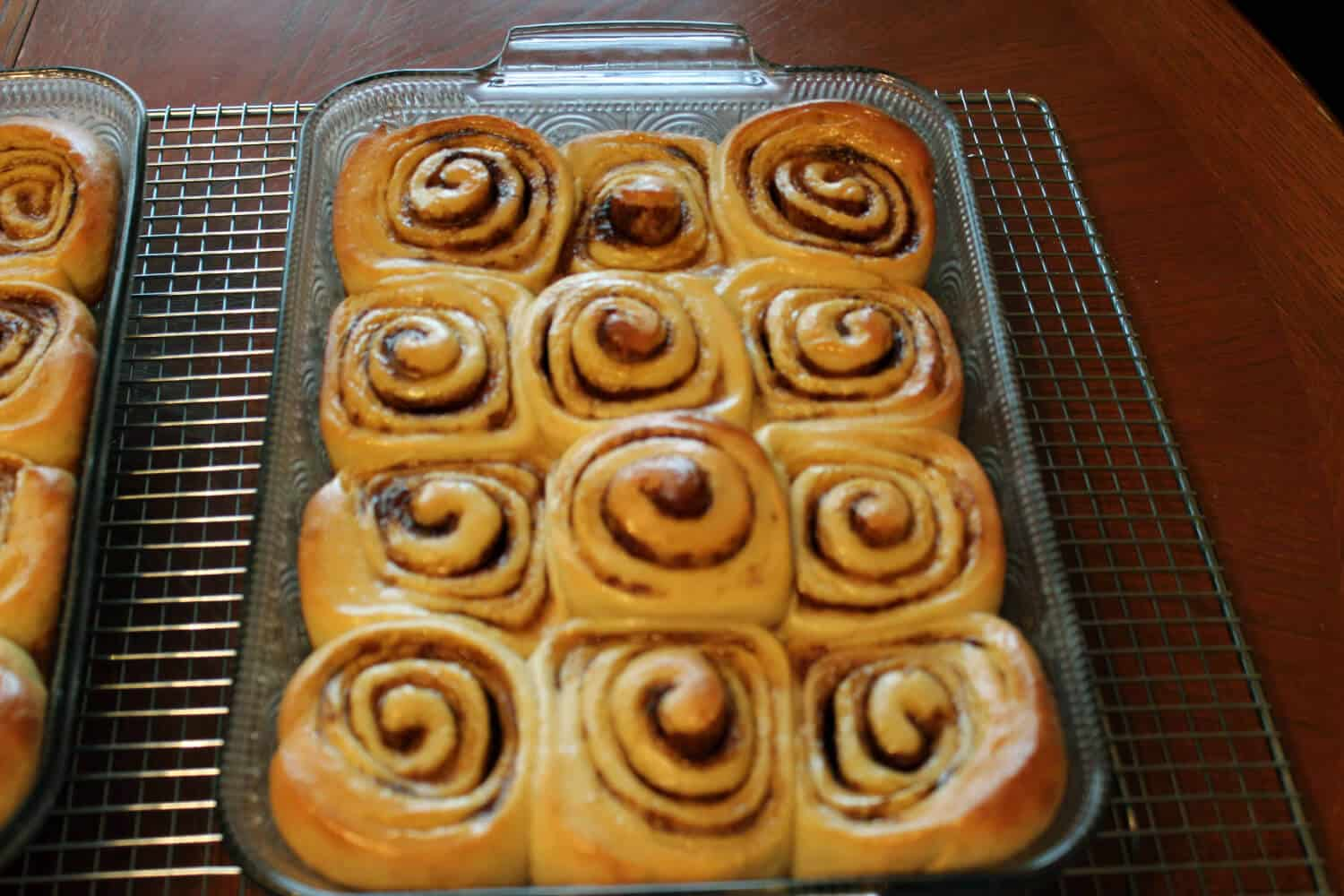 sourdough cinnamon rolls waiting for icing