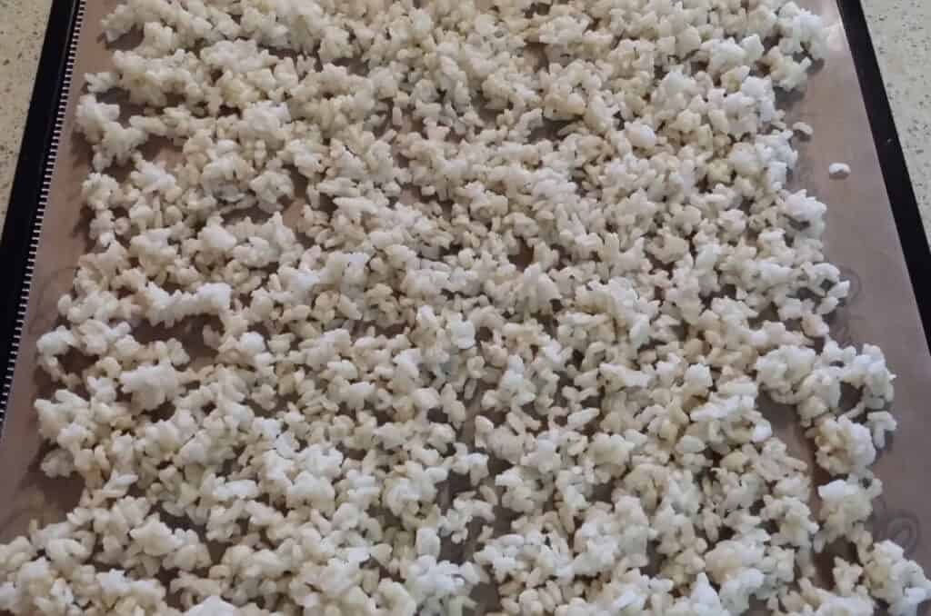 cold cooked rice on dehydrator tray