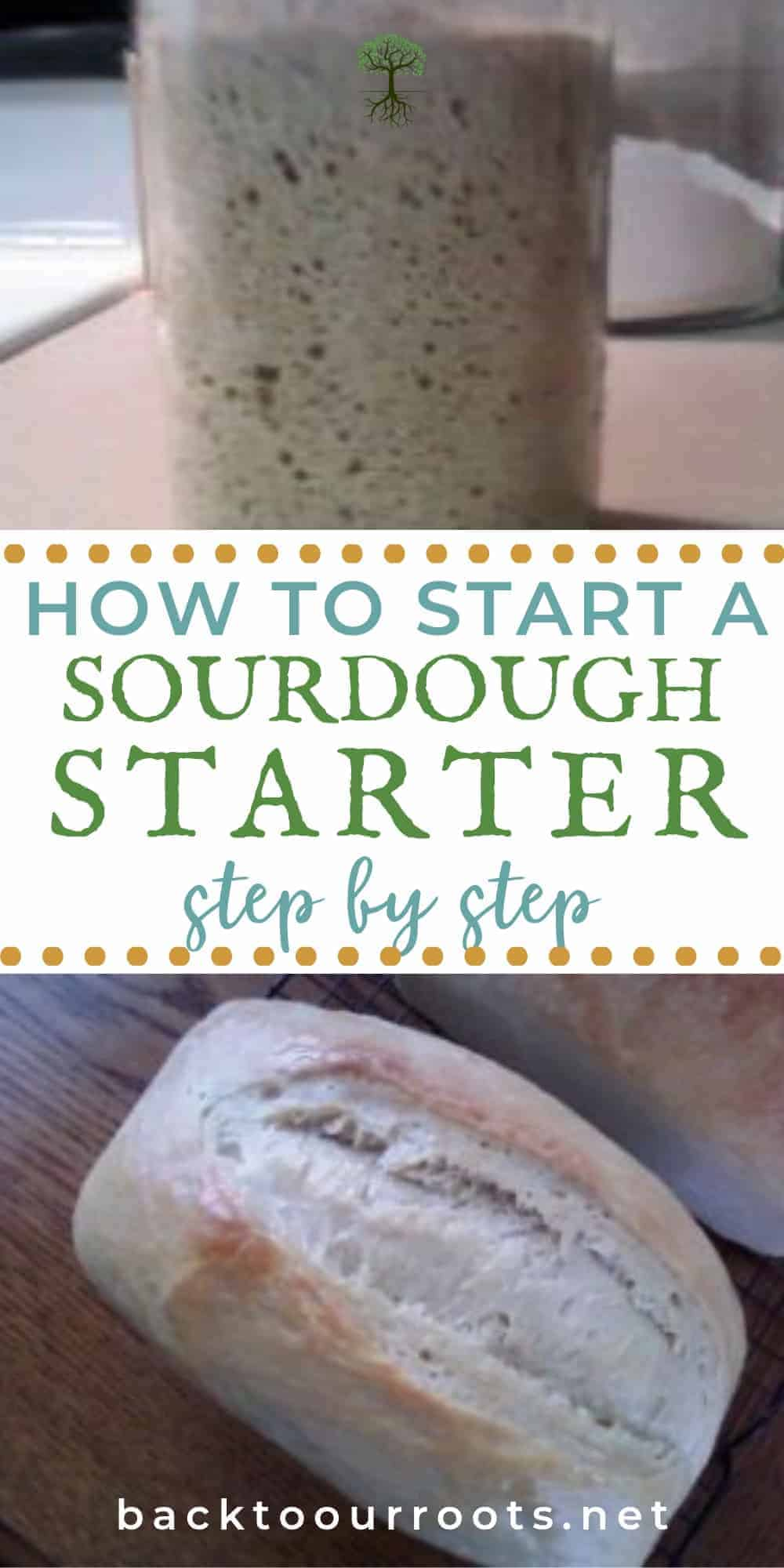 How to Start a Sourdough Starter