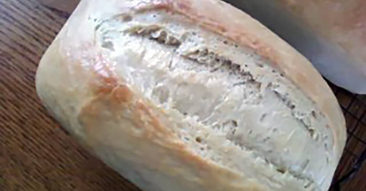Basic Sourdough Bread Loaf