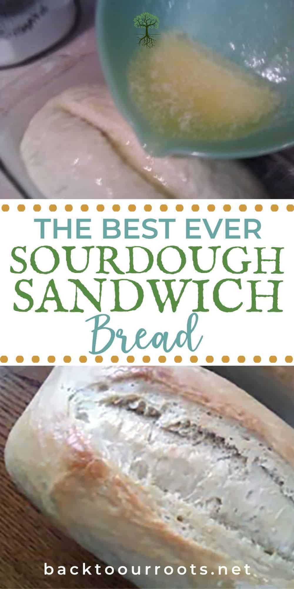 Basic Sourdough Bread Recipe