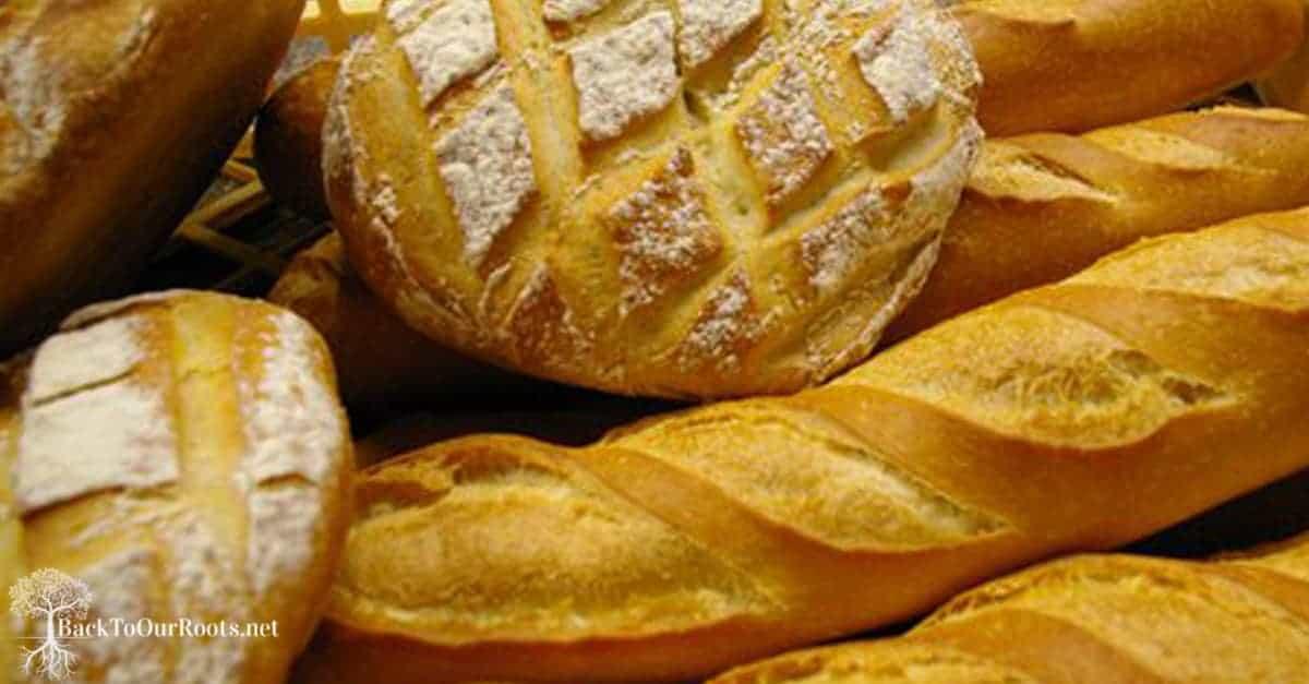 loaves of sourdough bread