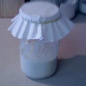 quart jar with flour and water covered with coffee filter