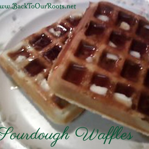 Simply the Best Sourdough Waffles
