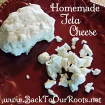 How to Make Easy & Delicious Feta Cheese at Home