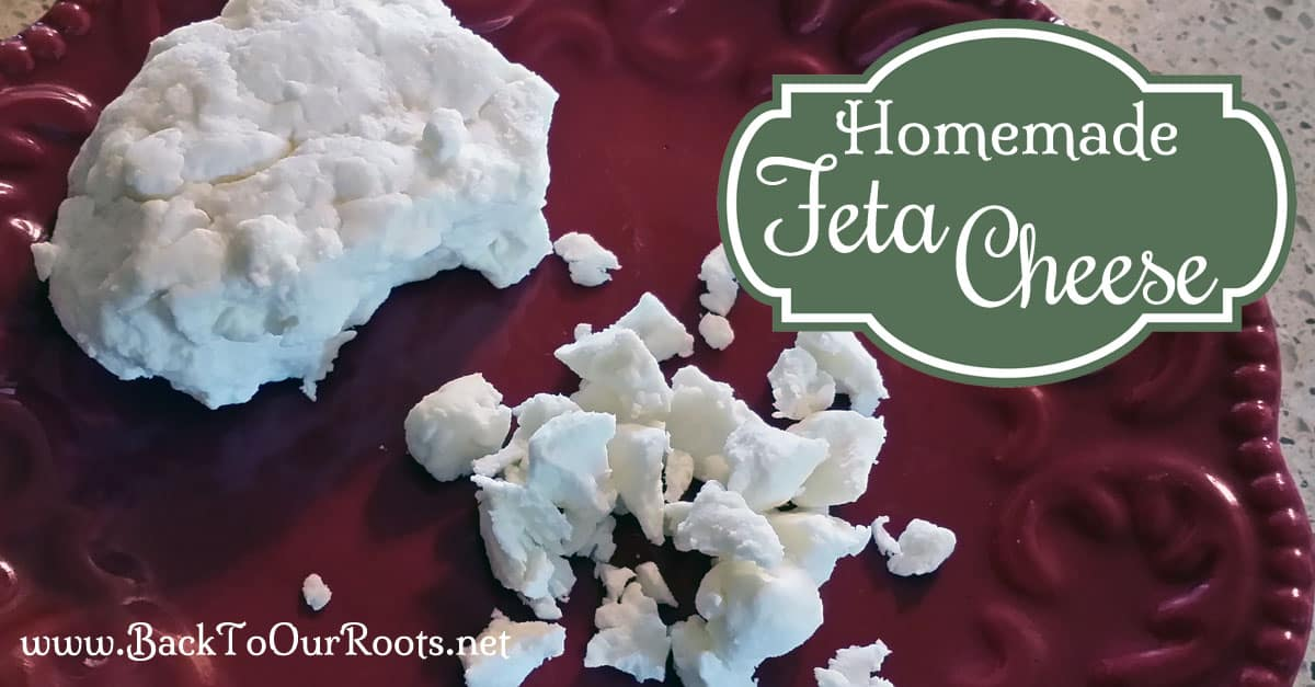 Make Your Own Feta Cheese