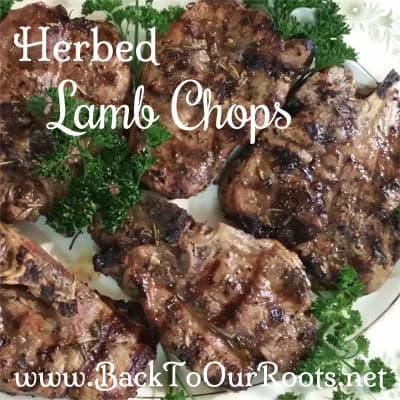 Succulent Herbed Lamb Chops