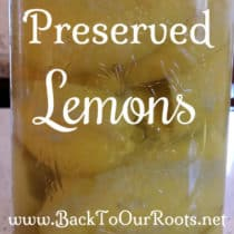 Preserved Lemons ~ Make Your Own at Home