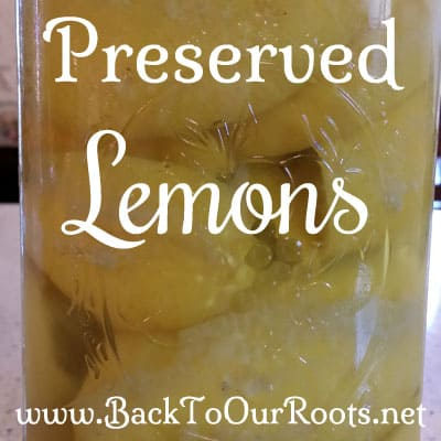 how to make preserved lemons video