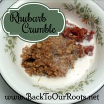 Rhubarb Crumble ~ A Tangy, Sweet Surprise
