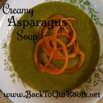 Creamy and Delicious Asparagus Soup