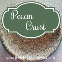 Pie Crust made of Pecans