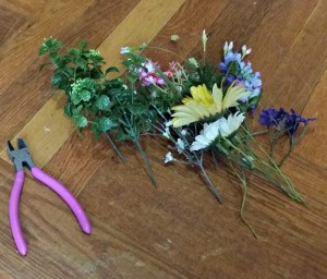 flowers for May Day Posies