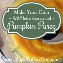 "Make Your Own ""Way Better Than Canned"" Pumpkin Puree"