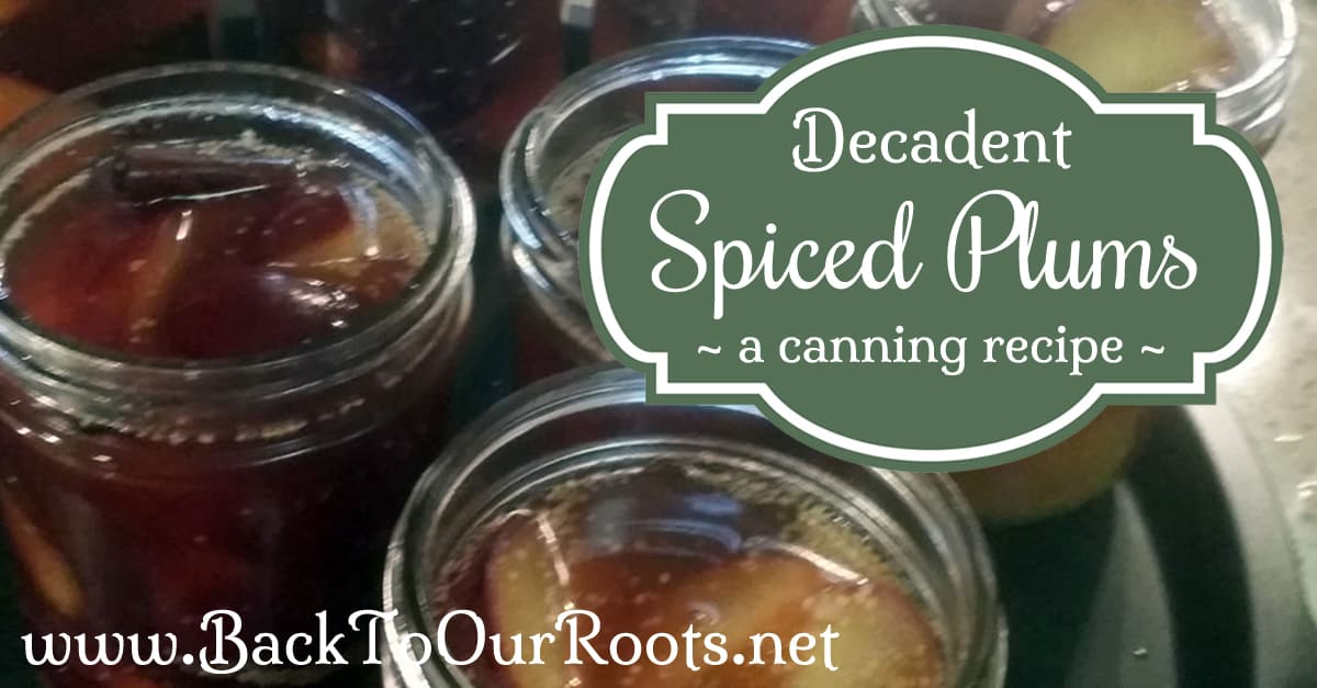 Spiced Plums Canning Recipe