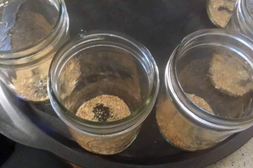 spiced plum jars with orange zest