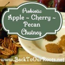 Probiotic Apple Cherry Pecan Chutney ~ A Fermented Recipe