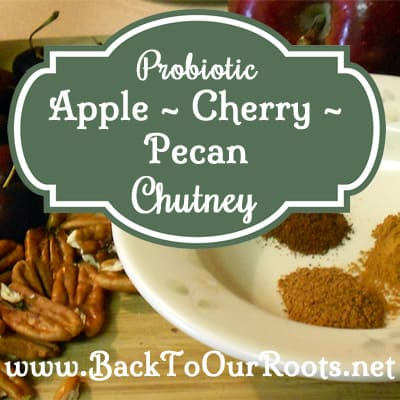 Probiotic Apple Cherry Pecan Chutney