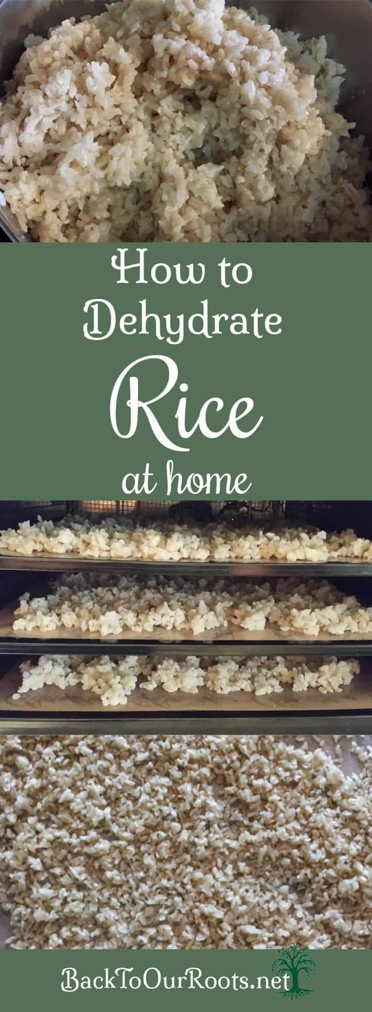 How To make Instant Rice at Home