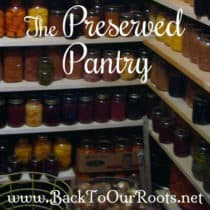 The Preserved Pantry ~ My Food Storage