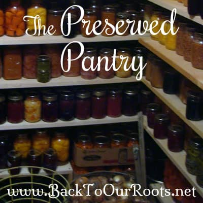 The Preserved Pantry ~ My Food Storage