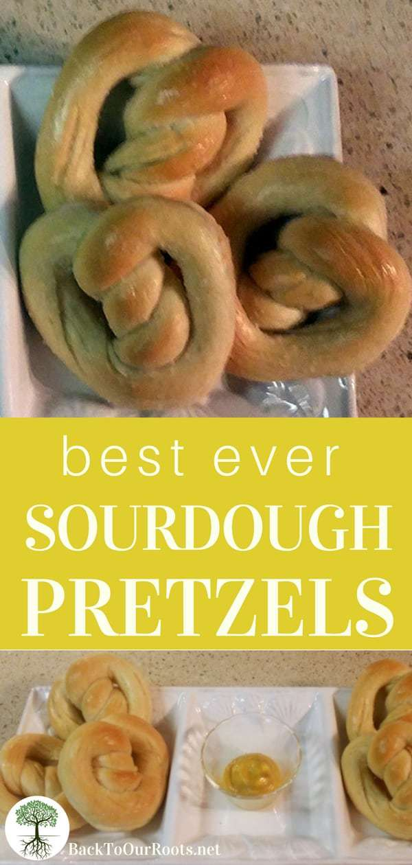 best ever sourdough pretzels with mustard on white serving dish