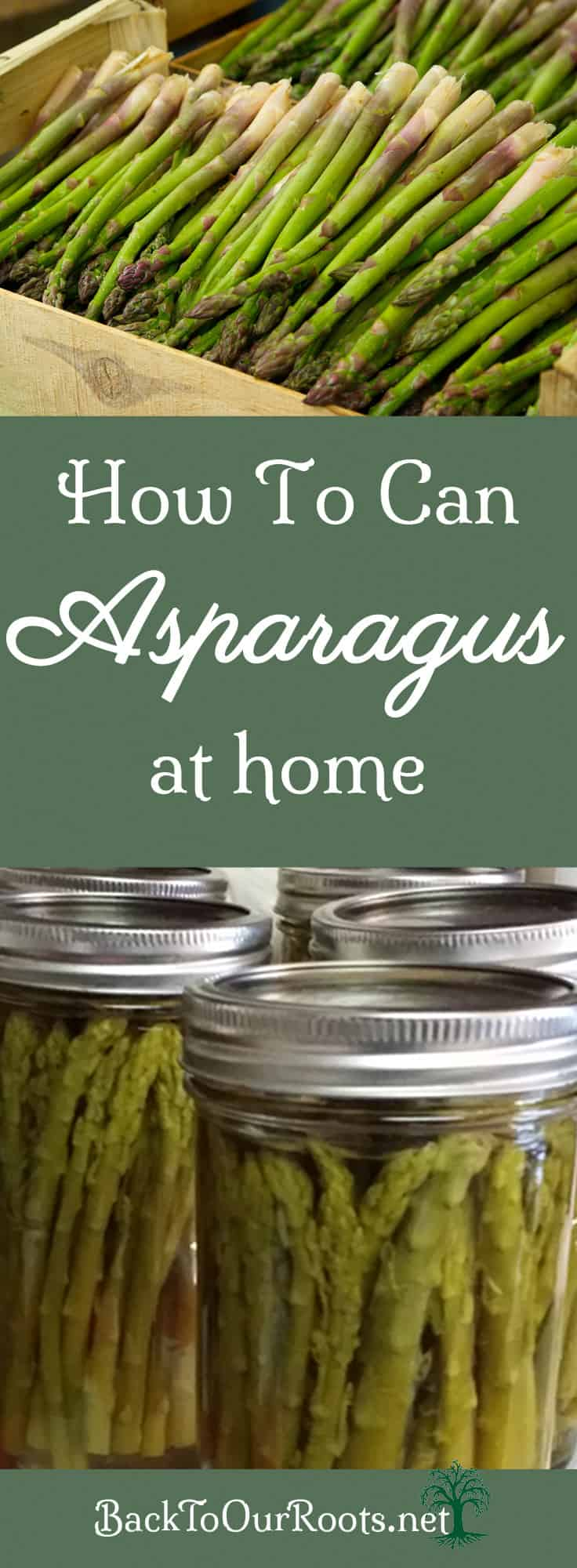 How To Can Asparagus at Home