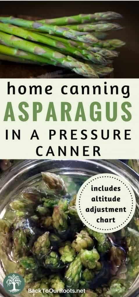 How to Pressure Can Asparagus Perfectly