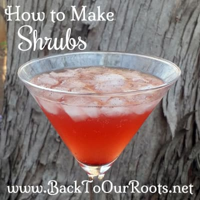 How to make a shrub