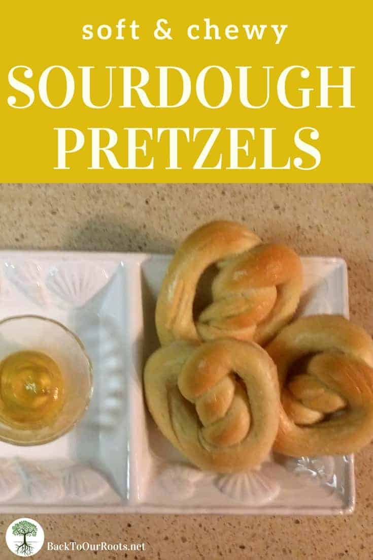 SOFT & CHEWY SOURDOUGH PRETZEL RECIPE: Sourdough pretzels. Golden on the outside, soft on the inside, and topped any way you want. What could be better than that?