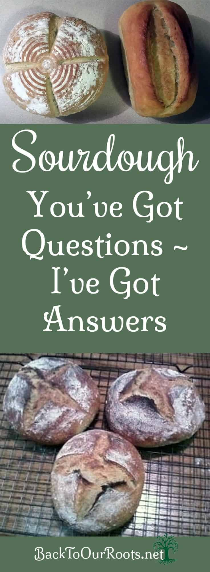 Sourdough State of Mind ~ You've Got Questions, I've Got Answers