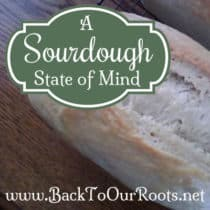 A Sourdough State of Mind ~ You've Got Questions, I've Got Answers