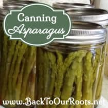 Pressure Canning Asparagus at Home