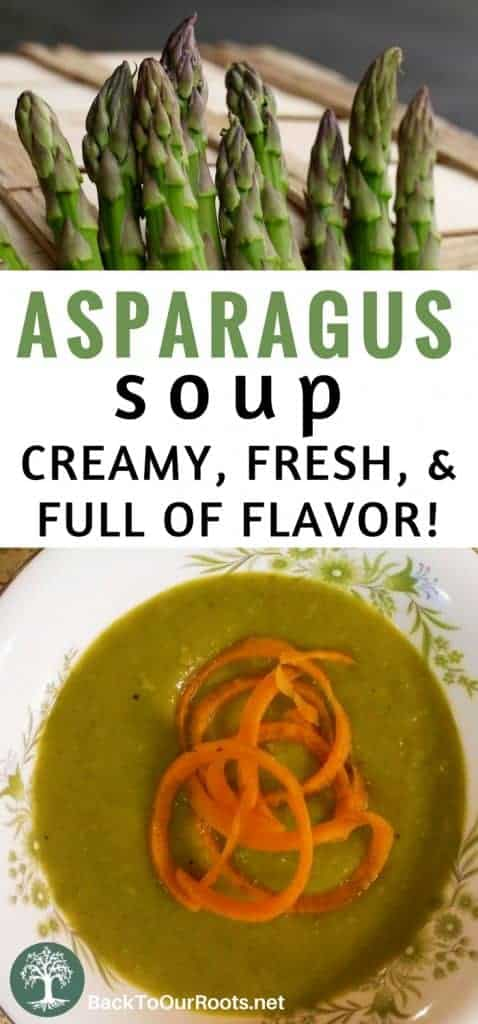 Asparagus Soup ~ Fresh, Healthy, & Full of Flavor