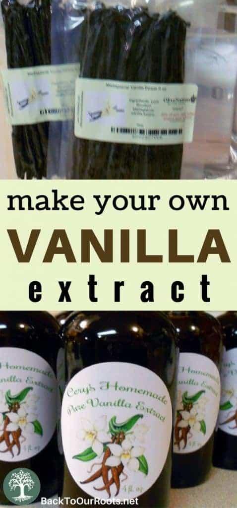 Vanilla Extract~Homemade~Double Strength