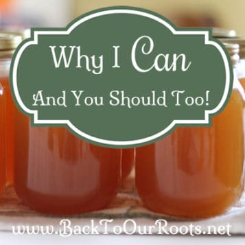 Why I Can And Why You Should Too