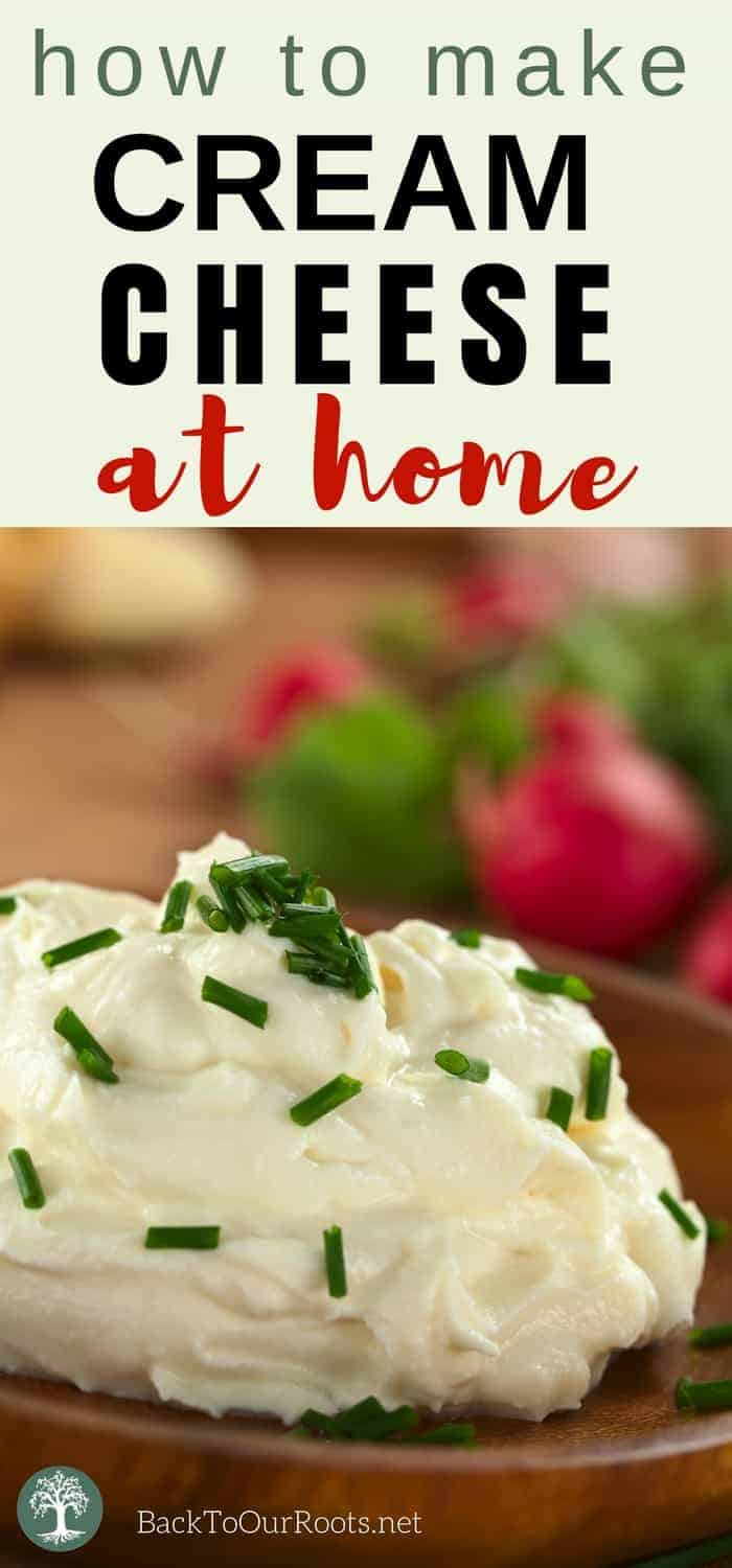 HOMEMADE CREAM CHEESE: Cream cheese is one of those versatile dairy products. Use it plain, sweet, or savory. It's easy! You should make some today!