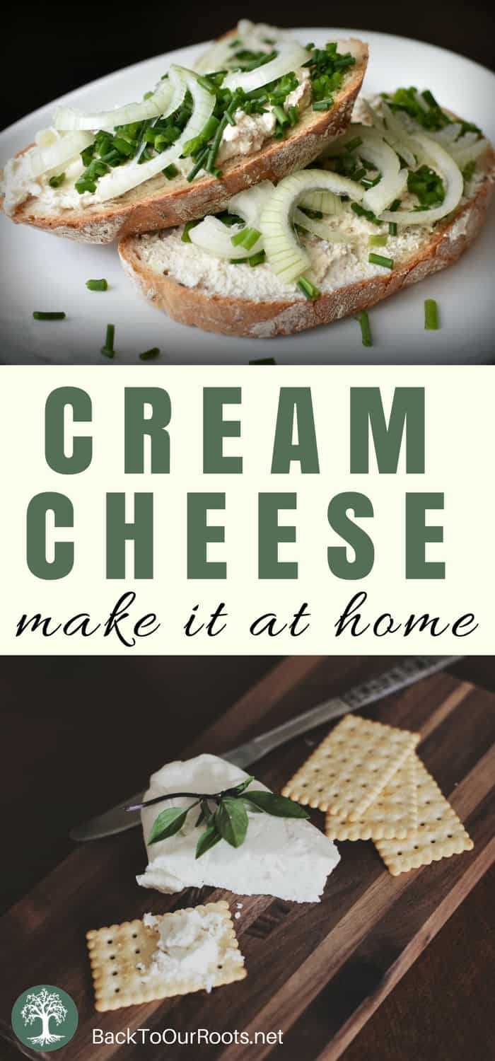 How to Make Cream Cheese at Home