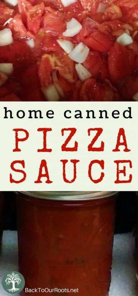Homemade Italian Herbed Pizza Sauce