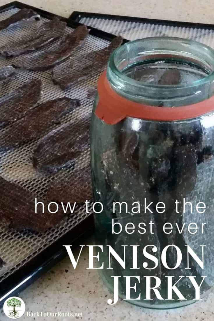 Best Ever Venison Jerky