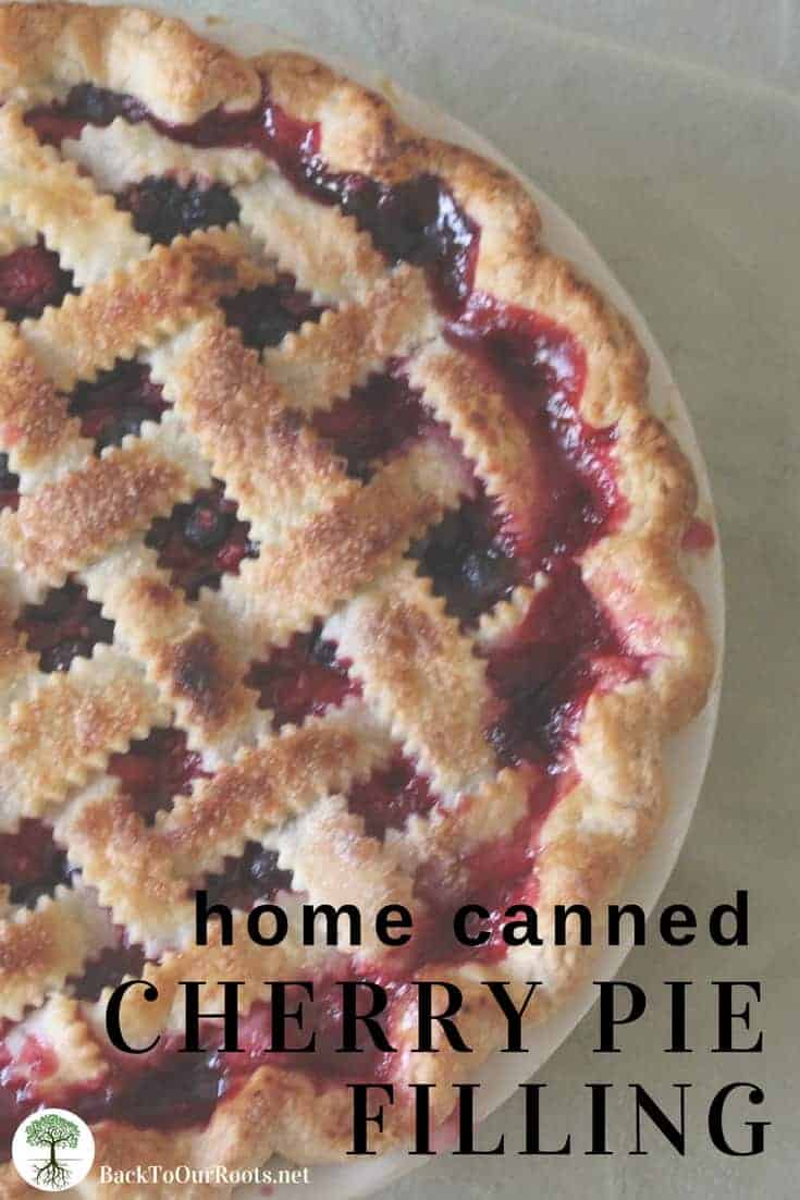 HOME CANNED CHERRY PIE FILLING: Who doesn't love cherry pie? Now you can make homemade cherry pie all year with home canned pie filling.