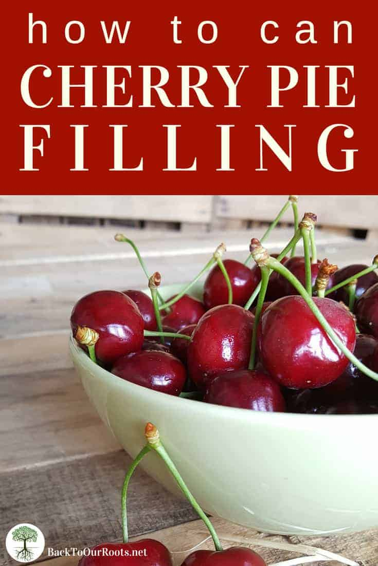 How to Can Cherry Pie Filling