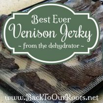 The Best Ever Venison Jerky Recipe