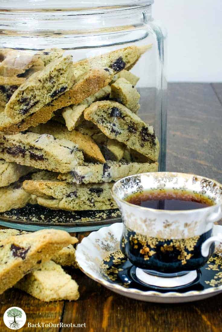 Chocolate Chunk Biscotti