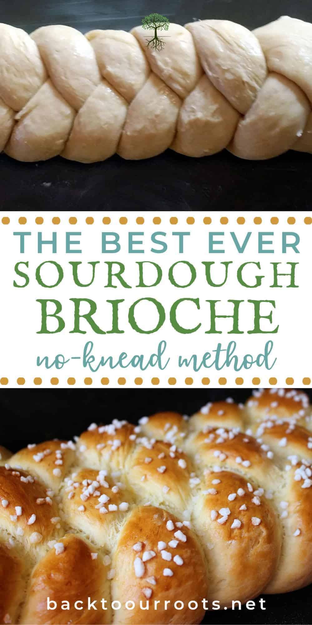 Rich & Buttery No-Knead Sourdough Brioche