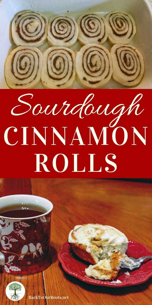 SOURDOUGH CINNAMON ROLLS: These sourdough cinnamon rolls are light and fluffy, with just the right amount of cinnamon filling yummyness and icing that is not too sweet.