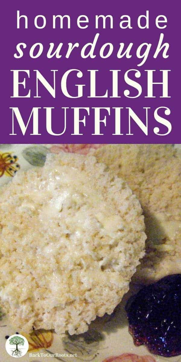 There is nothing I love more to pair with my morning cup of tea than a fresh sourdough English muffin. Ahhh, English muffins, how do I love thee? Let me count the ways...But first let me show you how to make the Ultimate Sourdough English Muffin.