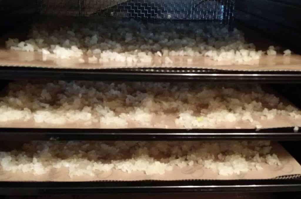 homemade minced onions in dehydrator
